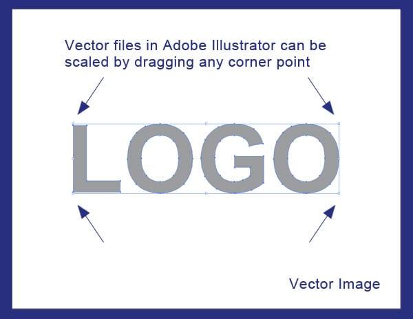 vector-export