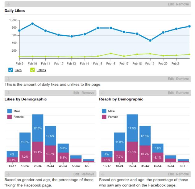 Hootsuite Social Media Marketing Analytics Report